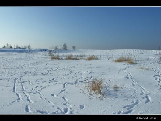 Winterfotos - Winterbilder - Winter auf der Bergehalde Lydia